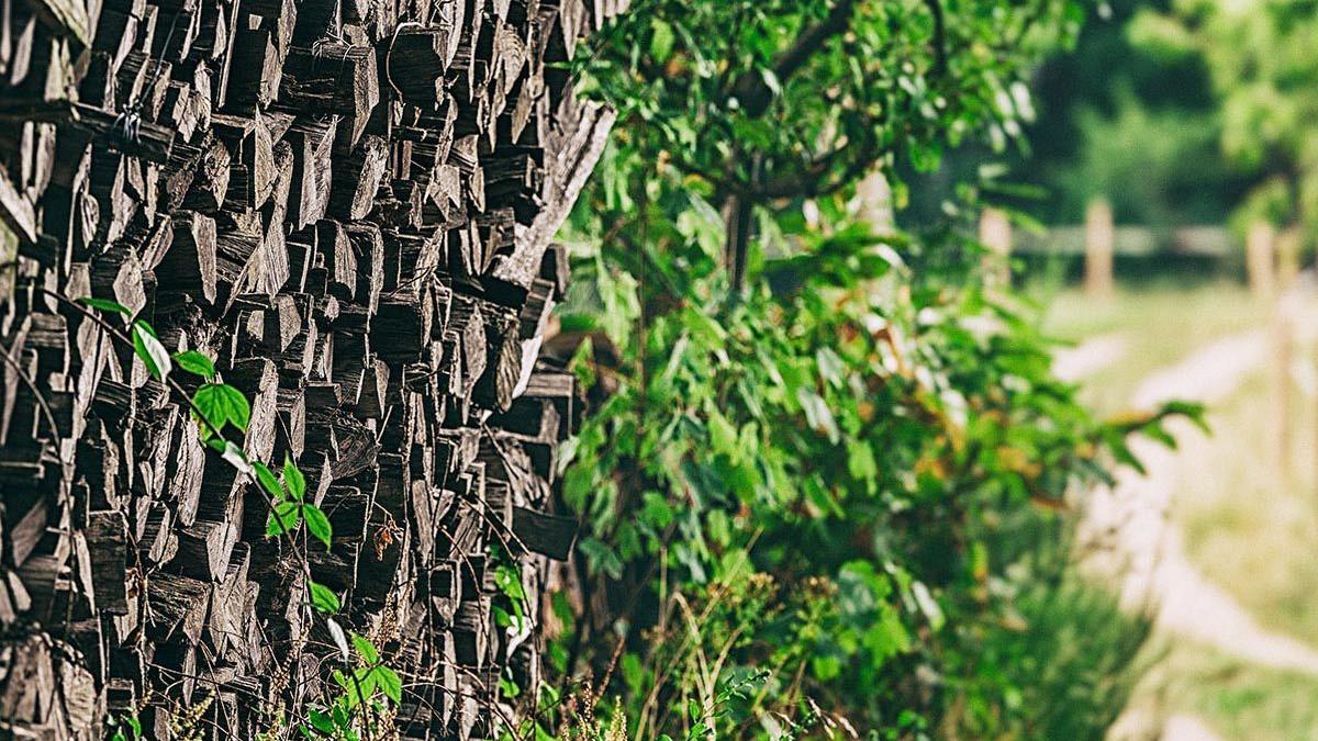 Holz entlang des Waldweges